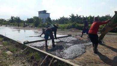 Photo of Progres Infrastruktur Ring Road II Sangatta Terus Berlanjut