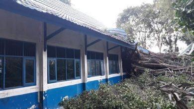 Photo of SMP Isran Noor Tertimpa Pohon Beringin