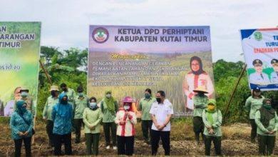 Photo of Ketua DPRD Dukung Pemanfaatan Lahan Pekarangan Dimasa Pandemi