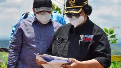 Photo of Menteri LHK Minta Lokasi IKN Dihijaukan Dengan Tanaman Asli Kalimantan