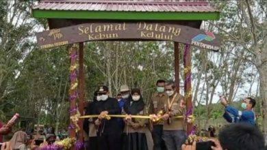 Photo of Pemkab Kutim Dukung Pengembangan Budidaya Madu Kelulut di SangSel