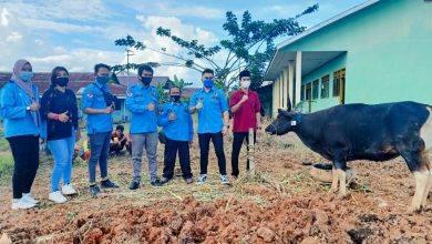Photo of Berqurban Bersama Pemuda, DPD KNPI Kutim Bagikan Hewan Qurban